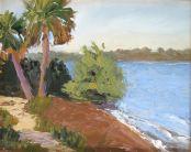 Palm Pathway - Oil on panel - 8x10