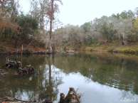 Withlacoochee View