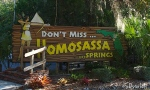 Don't Miss Homosassa Springs!