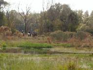 Colt Creek is popular with equestrians