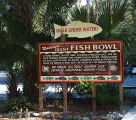 World famous fish bowl