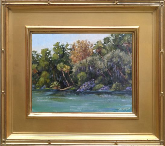 "Homosassa Springs -  8x10"" oil on linen panel"
