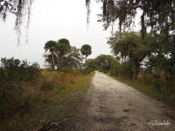 Pretty limerock trail