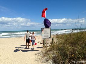 Red & Purple Flag Warnings - but still beautiful!