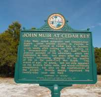 John Muir at Cedar Key