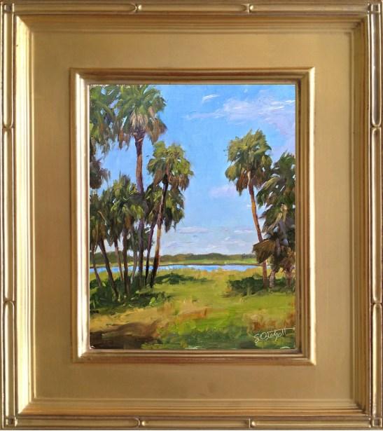 """Myakka Palms in the Winter  8x10"""" oil on linen panel en plein air"""