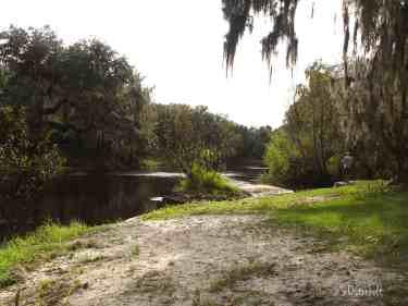Where Peace River and Paynes Creek meet
