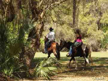 Visitors take their horses for a ride