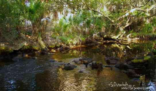 Tidal Blackwater Stream trickles over some rocks