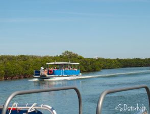 Caladesi Island beach Ferry loaded with visitors