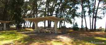 Love the shapes of the old picnic pavilions -