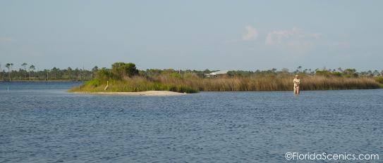 Rick tries his luck fishing. Big Lagoon State Park is in the distance. I'll be posting a painting of that park soon!