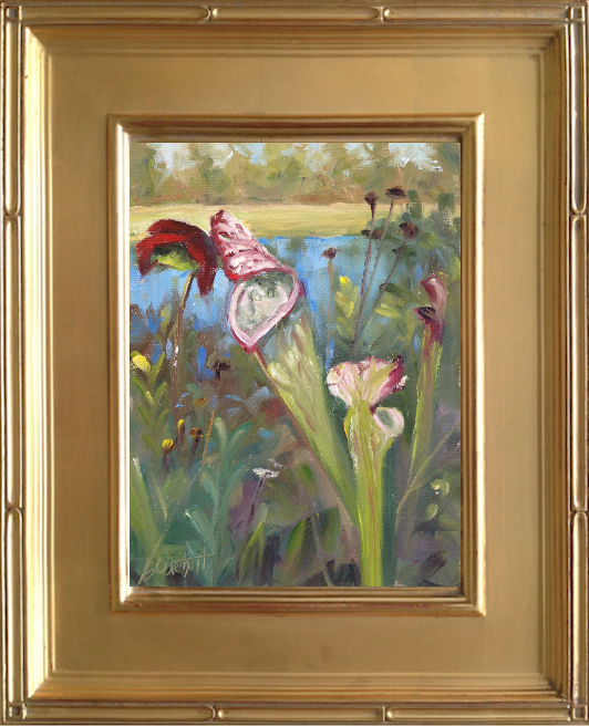 Pitcher Plants at Yellow River Marsh Preserve State Park - 6x8 oil on canvas panel