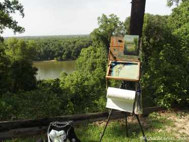 Torreya Painting on location