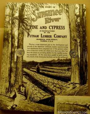 Suwannee River Pine Brochure