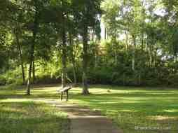 Walkway through park