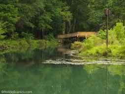 Bridge over blue hole stream