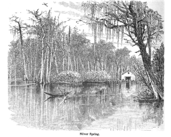 Harry Fenn - Illustration of Silver Spring 1870