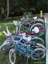 Bikes ready to rent