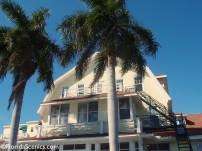 Gasparilla Inn Palms