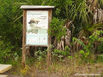 Manatee info sign