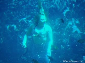 Mermaid feeds the fish
