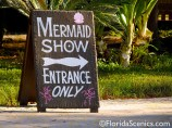This way to the mermaid show!