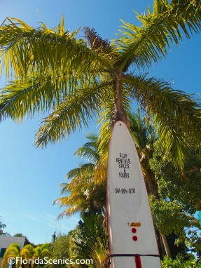 SUP - stand up paddle board rentals