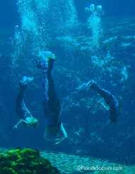Legendary Mermaids in formation