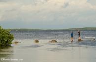 Boys fishing the bay