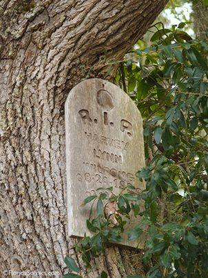 RIP nailed to tree