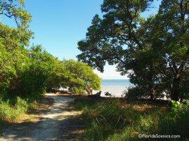 Trail along the beach