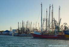 More shrimp boats
