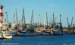 Shrimp boats on stock island