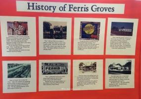 Grove History